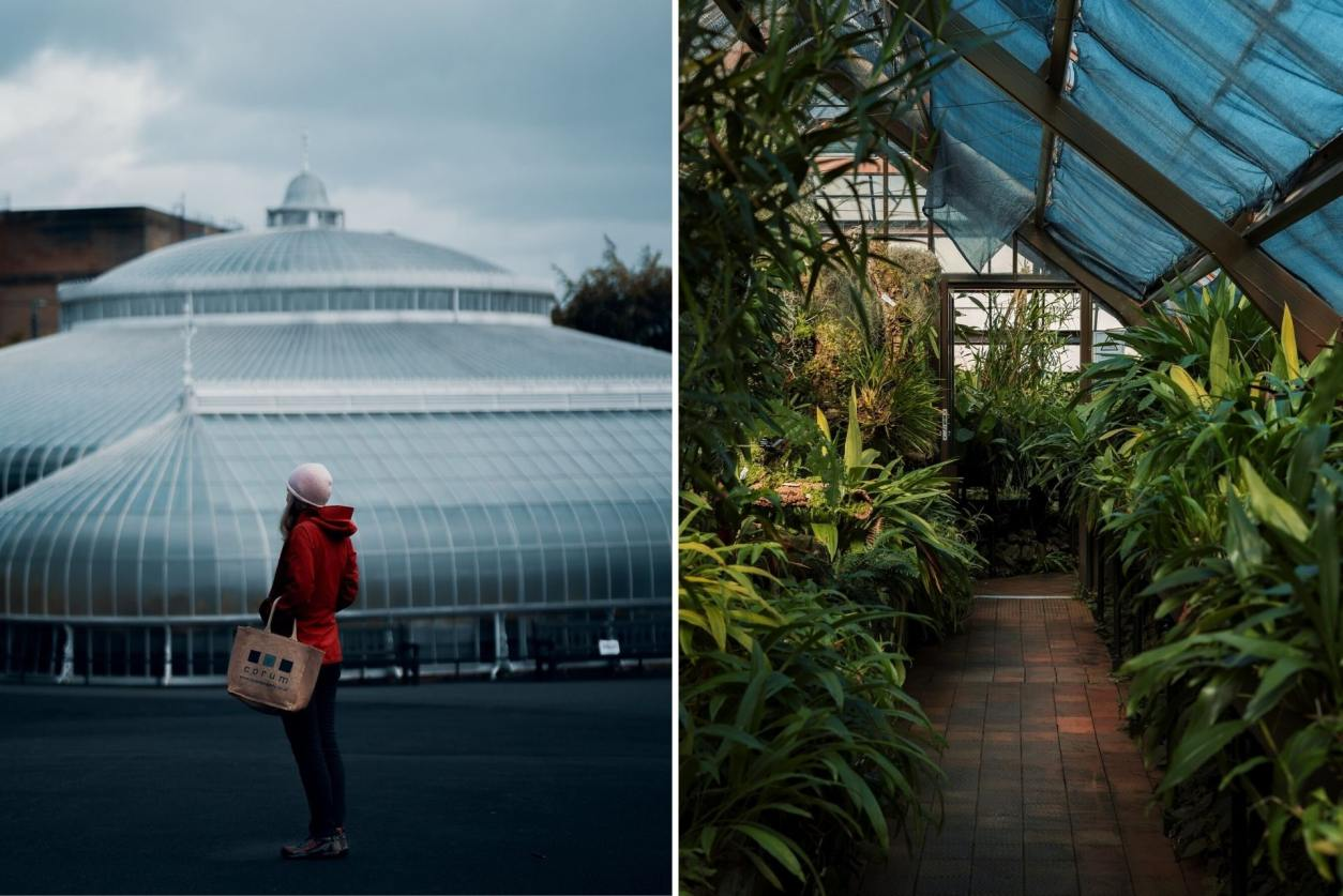 woman-exploring-glass-domed-glasgow-botanic-gardens-with-plants-2-days-in-glasgow
