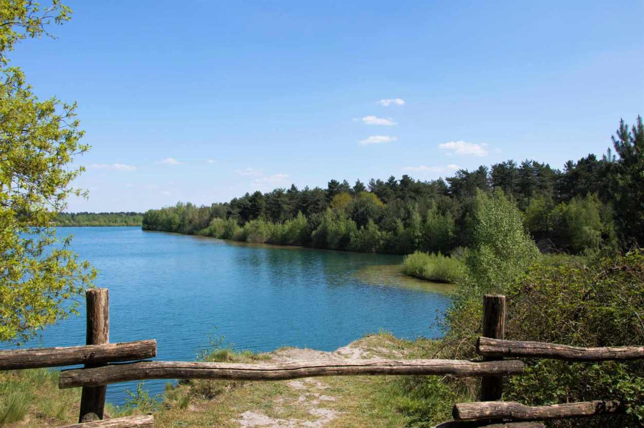 trees-going-around-lake-with-crystal-clear-blue-waters-in-de-masduinen-national-park-nature-in-the-netherlands-beautiful-places-in-the-netherlands