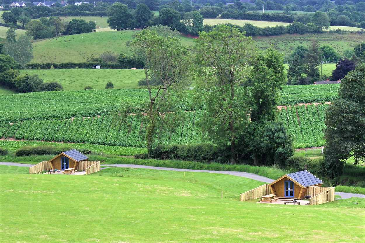 two-glamping-pods-in-green-field-at-the-jungle-ni