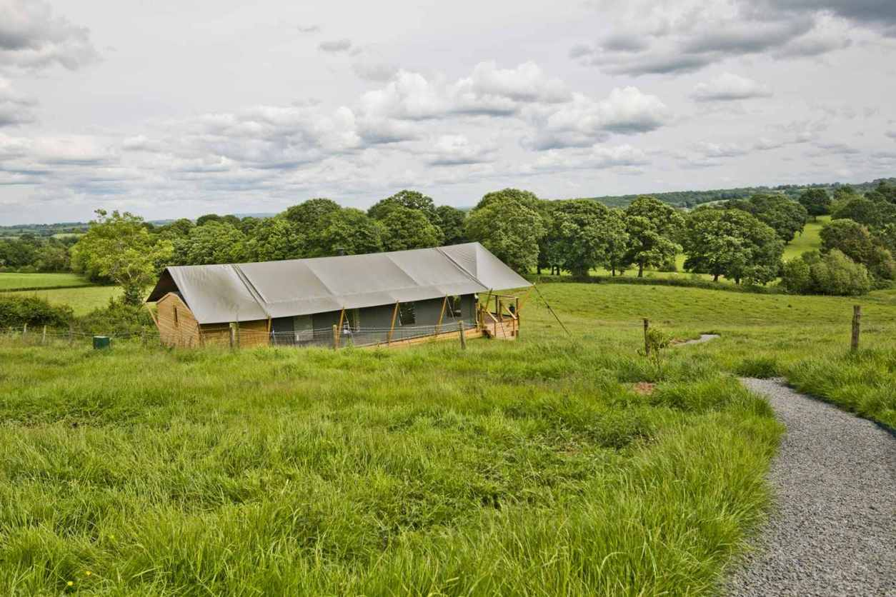 large-green-safari-tent-with-decking-in-large-green-field-on-darnells-farm