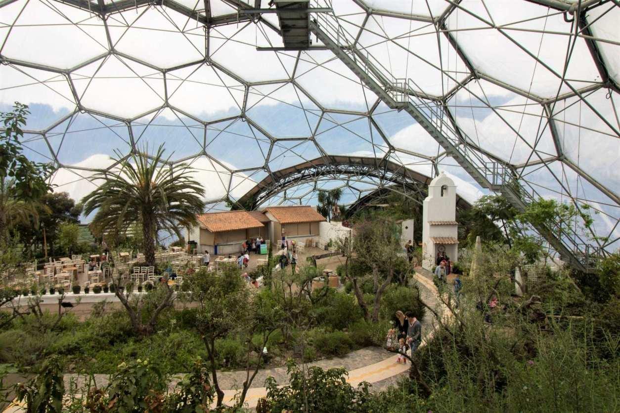 plants-inside-the-eden-project-biodome-indoor-activities-cornwall