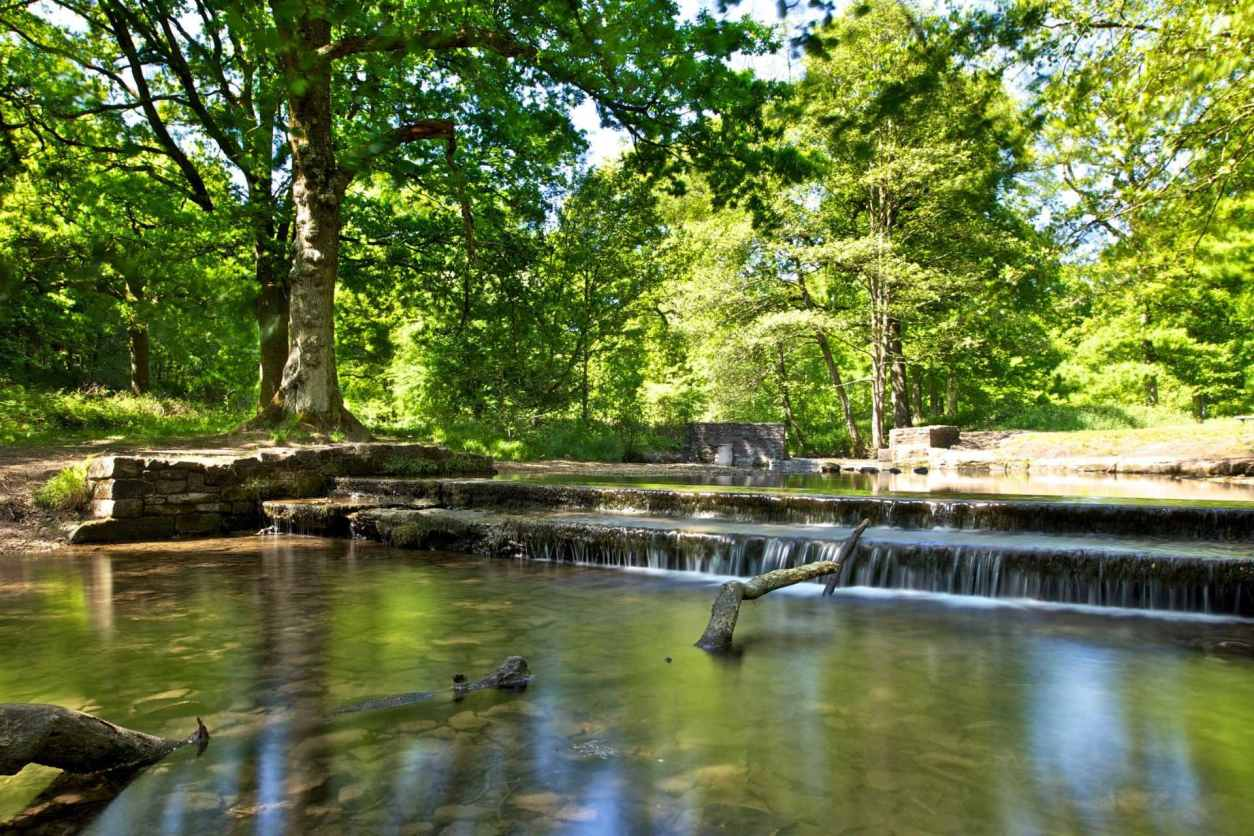 small-waterfall-in-pond-at-wenchford-picnic-site-things-to-do-in-the-forest-of-dean