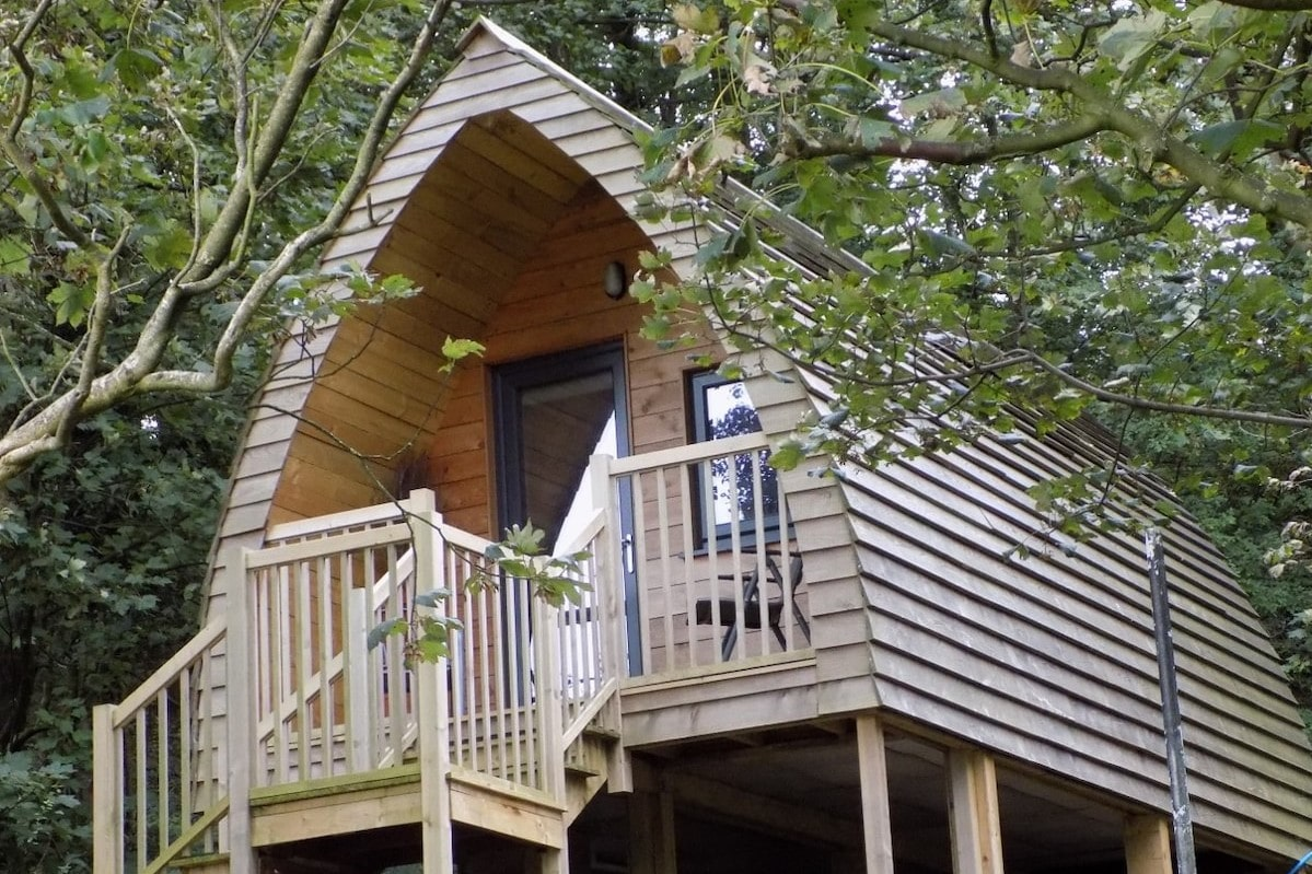 steps-leading-up-to-luxury-woodland-glamping-pod-in-trees-at-heaves-wood-tahn