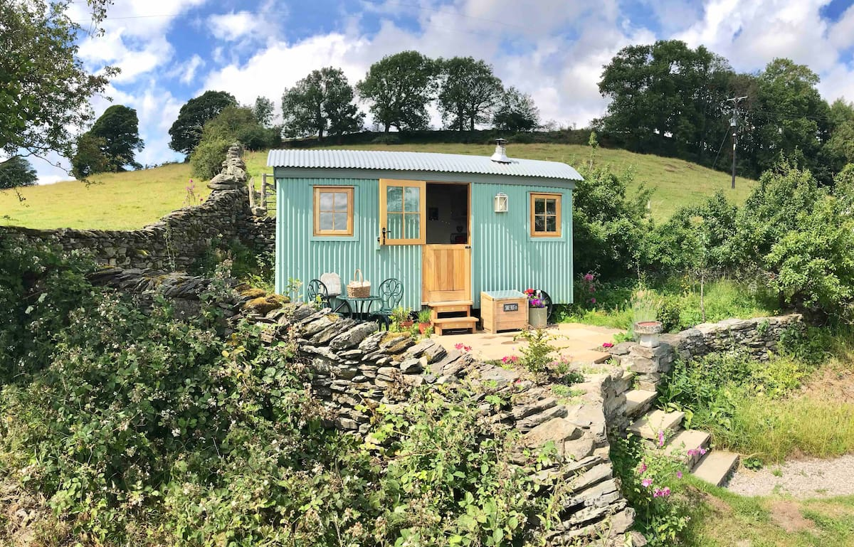 teal-wild-sheep-shepherds-hut-up-steps-in-garden-on-sunny-day