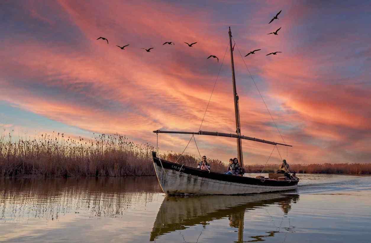 birds-flying-over-boat-at-sunset-in-parque-natural-de-la-albufera