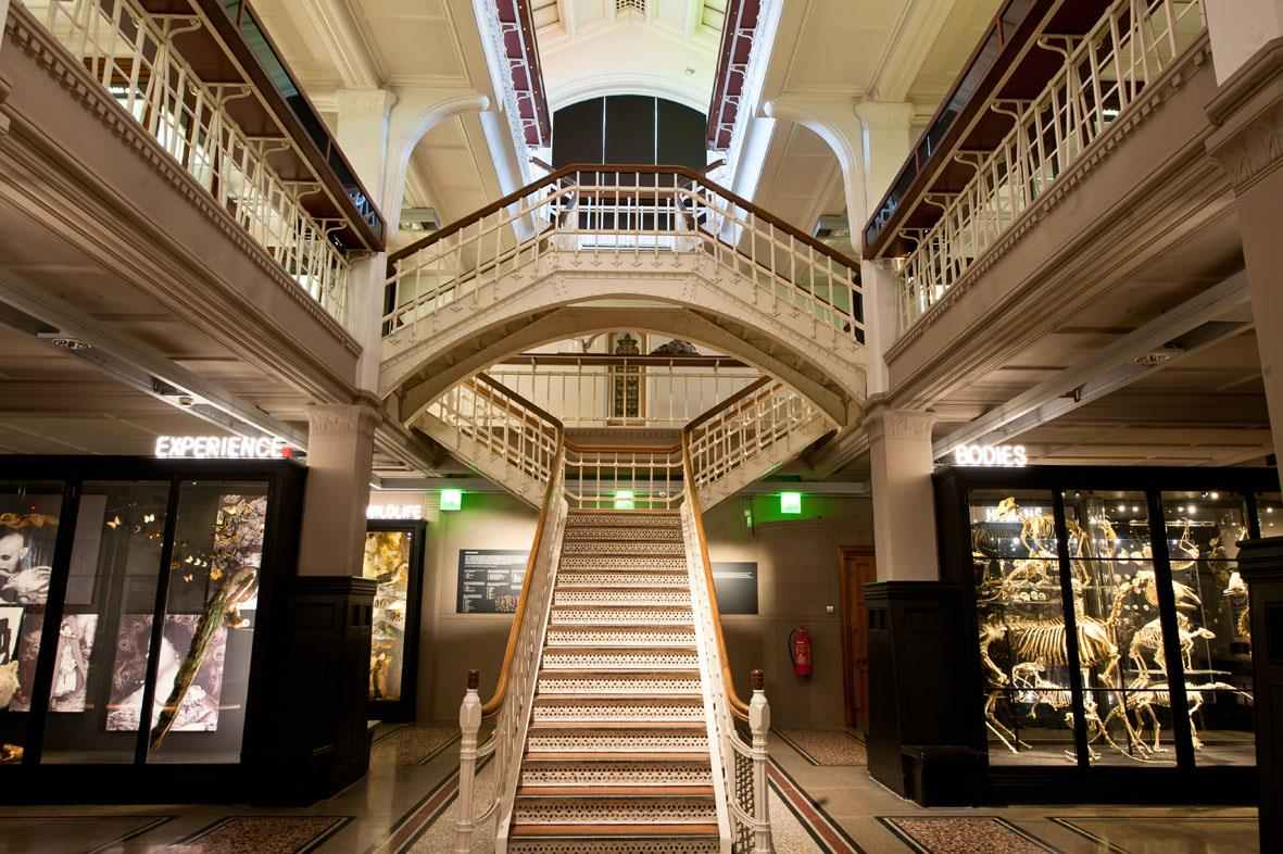 grand-staircase-in-manchester-museum-free-things-to-do-in-manchester