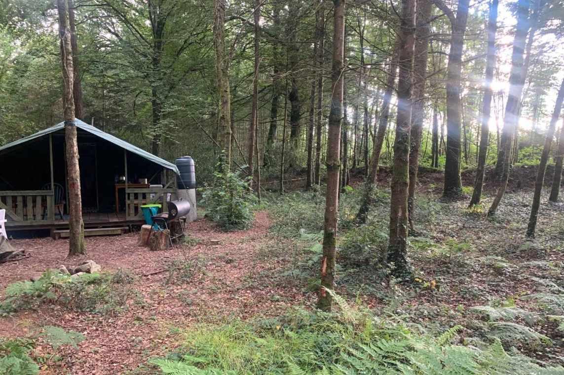 restful-retreat-safari-tent-in-forest