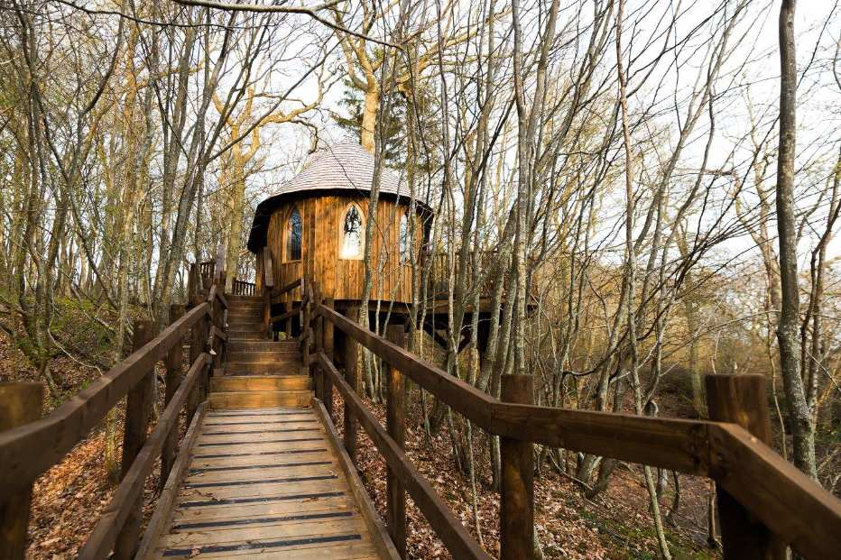steps-leading-up-to-hoots-treehouse-in-woodland-in-autumn-glamping-sussex
