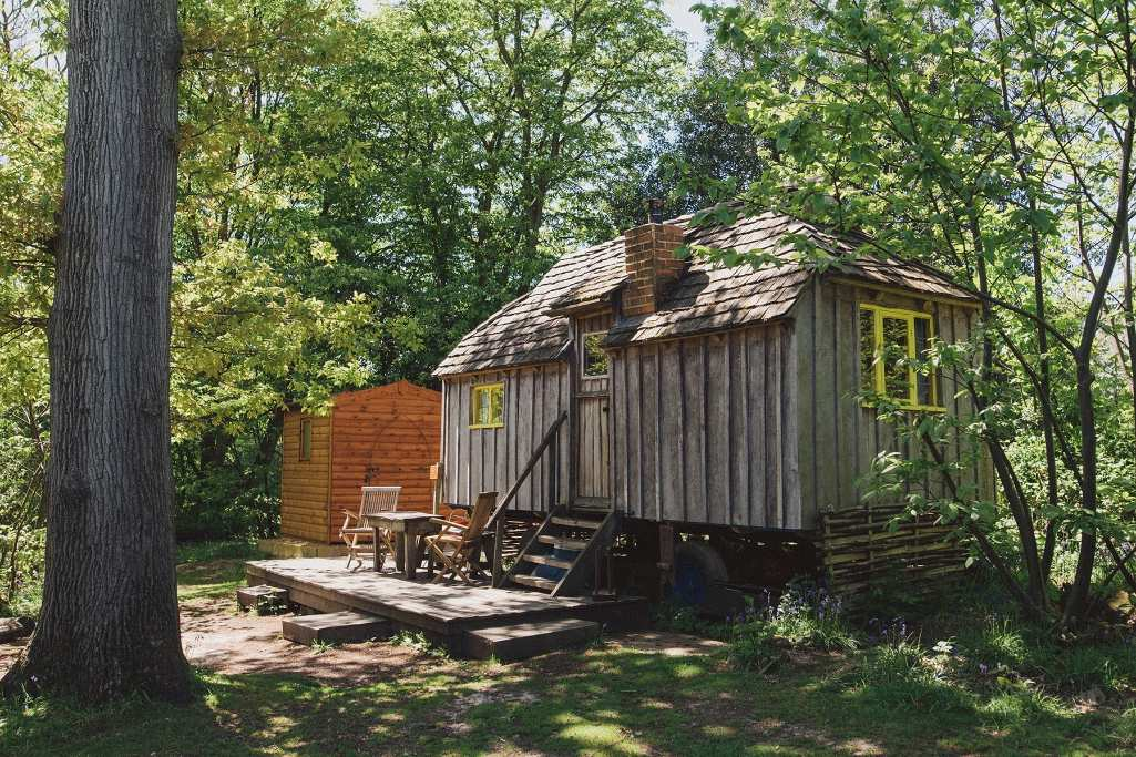 woodcutters-cottage-in-forest-at-swallowtail-hill-may