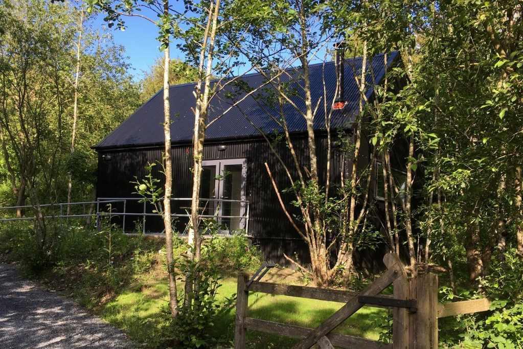 black-alder-cabin-amid-trees-in-woodland