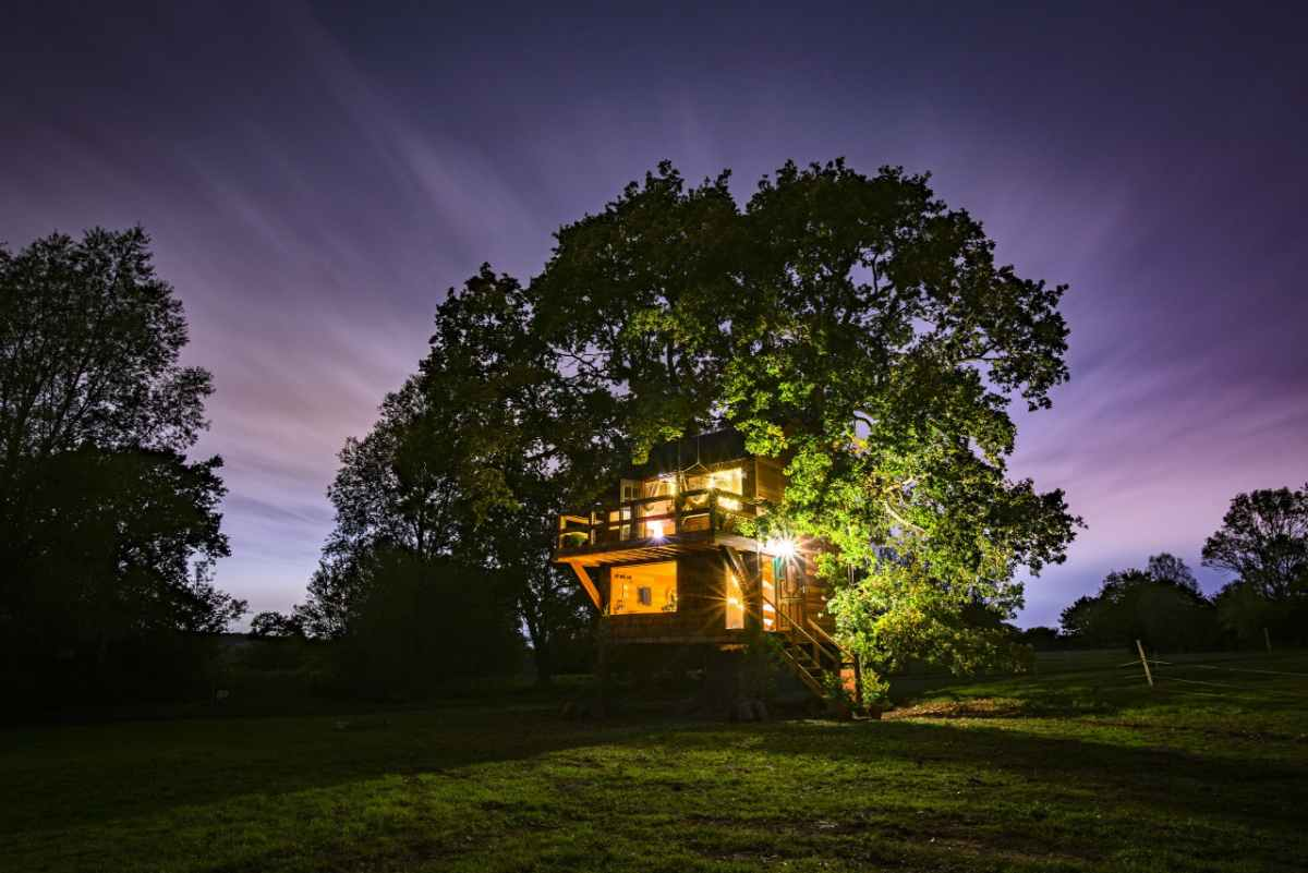 the-old-oak-treehouse-at-colemans-farm-lit-up-at-night-glamping-essex