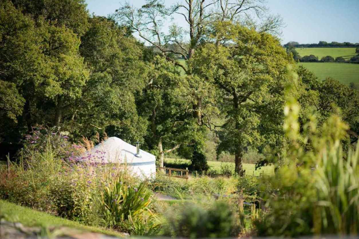 white-yurt-by-trees-in-field-at-fron-farm-yurt-retreat