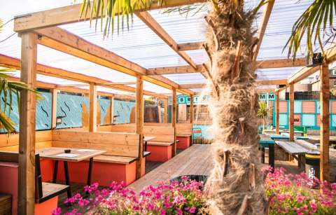 palm-trees-and-outdoor-tables-at-brixton-courtyard-bottomless-brunch-brixton