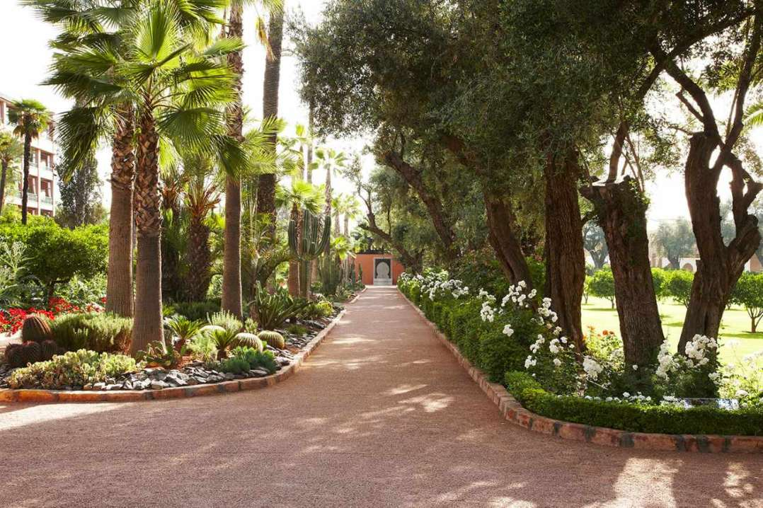 pathway-going-through-la-mamounia-hotel-gardens