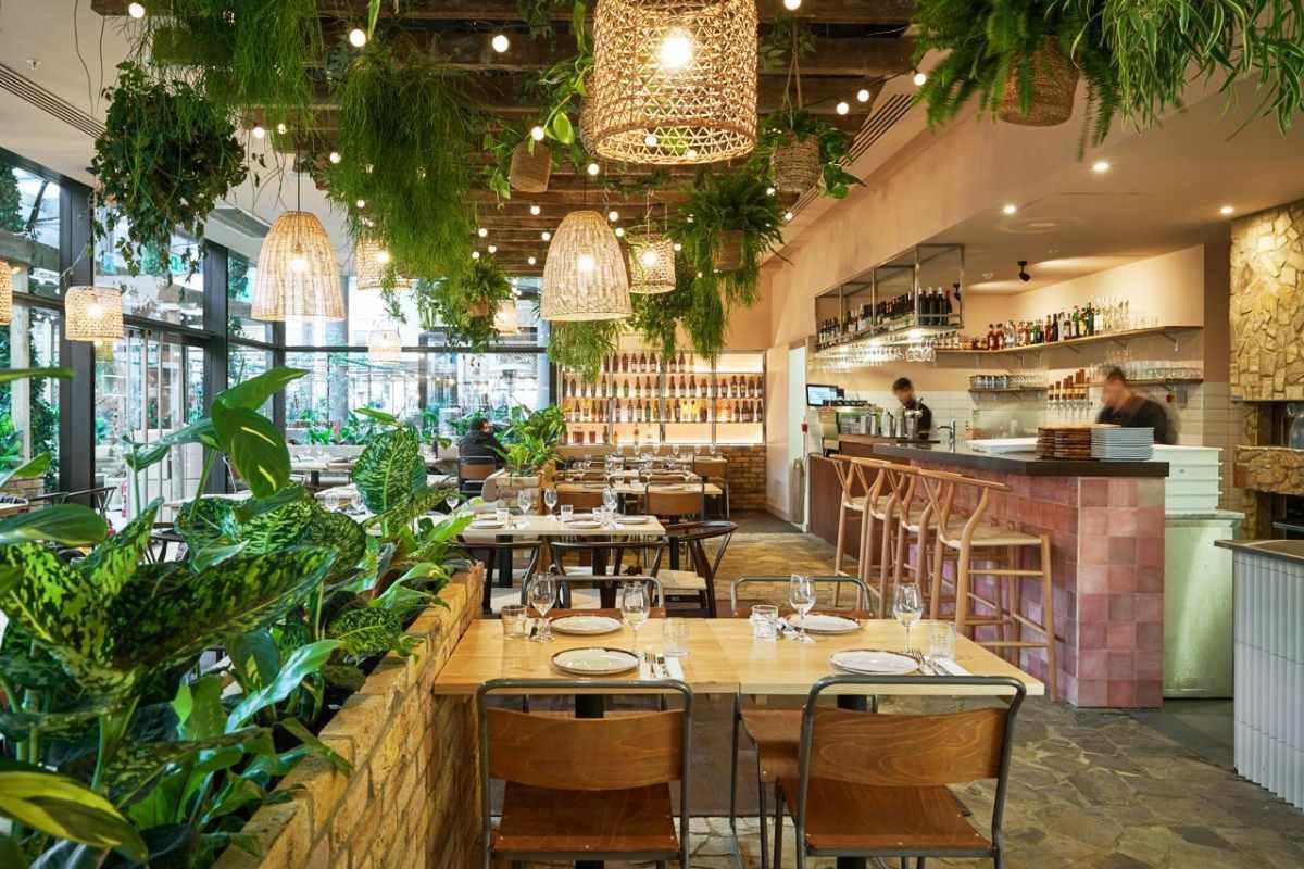 interior-of-brother-marcus-restaurant-bottomless-brunch-balham