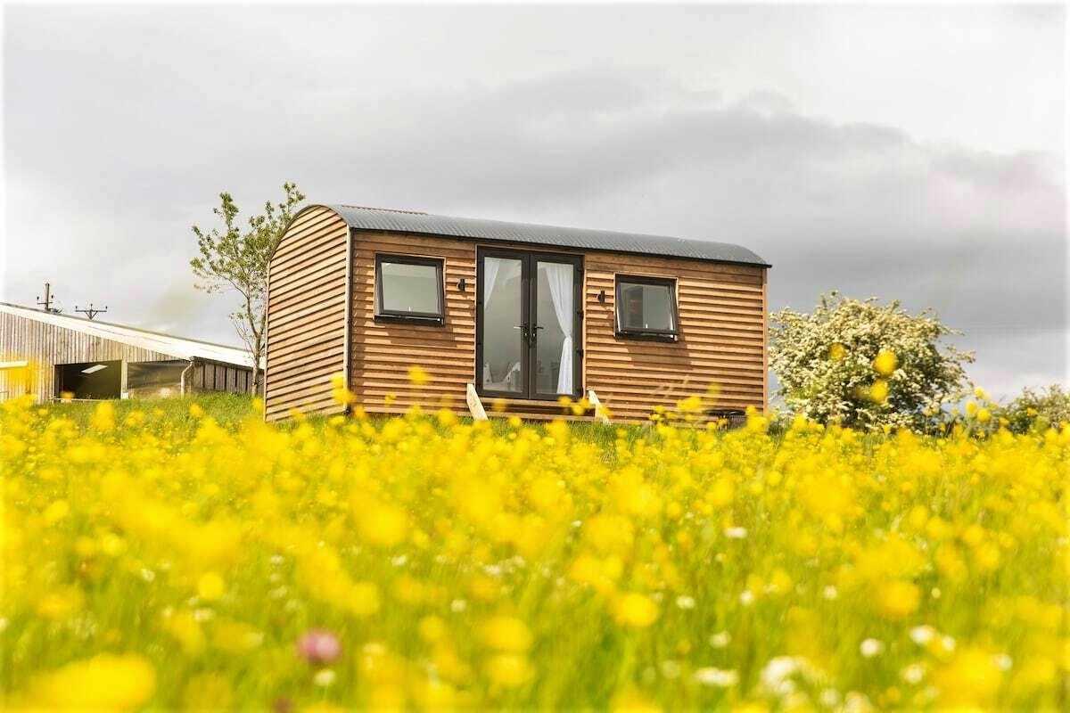 luxury-shepherds-hut-in-yellow-field-northumberland-shepherds-huts