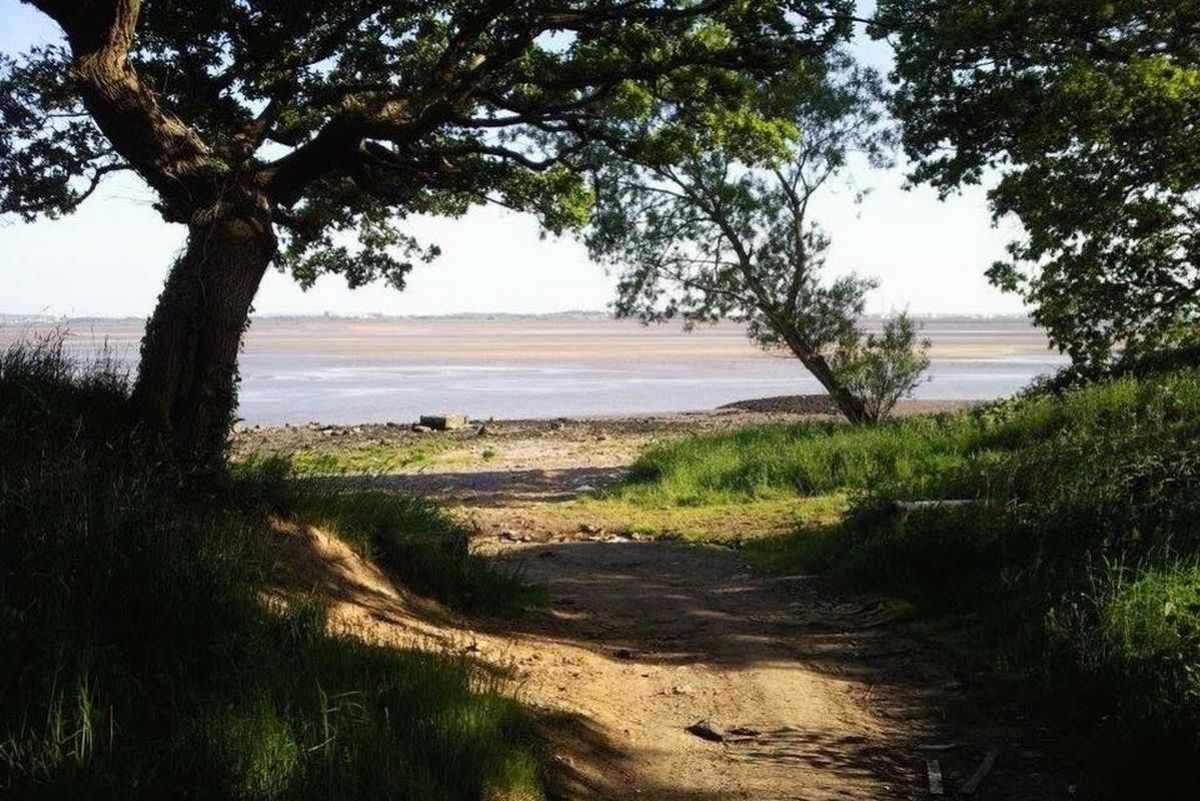 pathway-leading-down-to-oglet-beach
