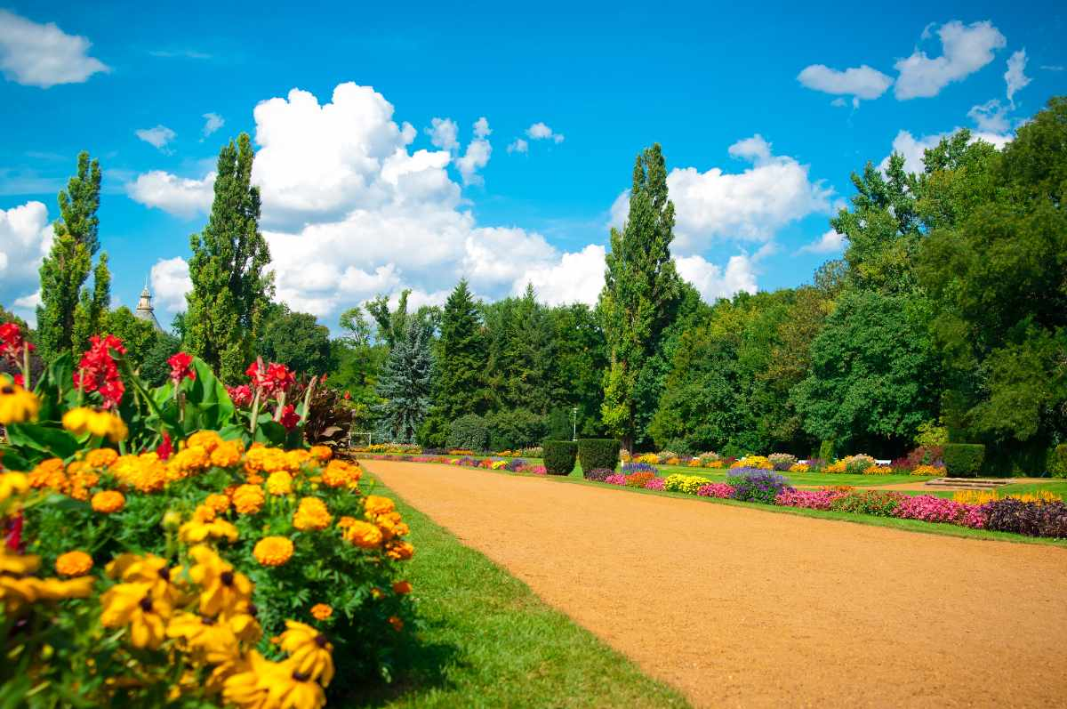 garden-of-flowers-on-margaret-island-on-sunny-day-romantic-things-to-do-in-budapest