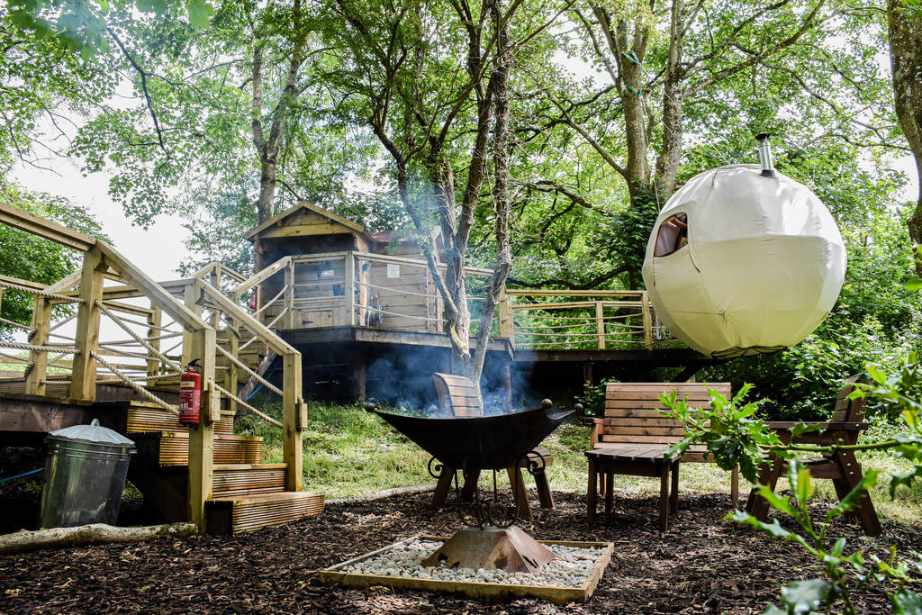 the-pheasants-retreat-tree-tent-with-cabin-in-forest