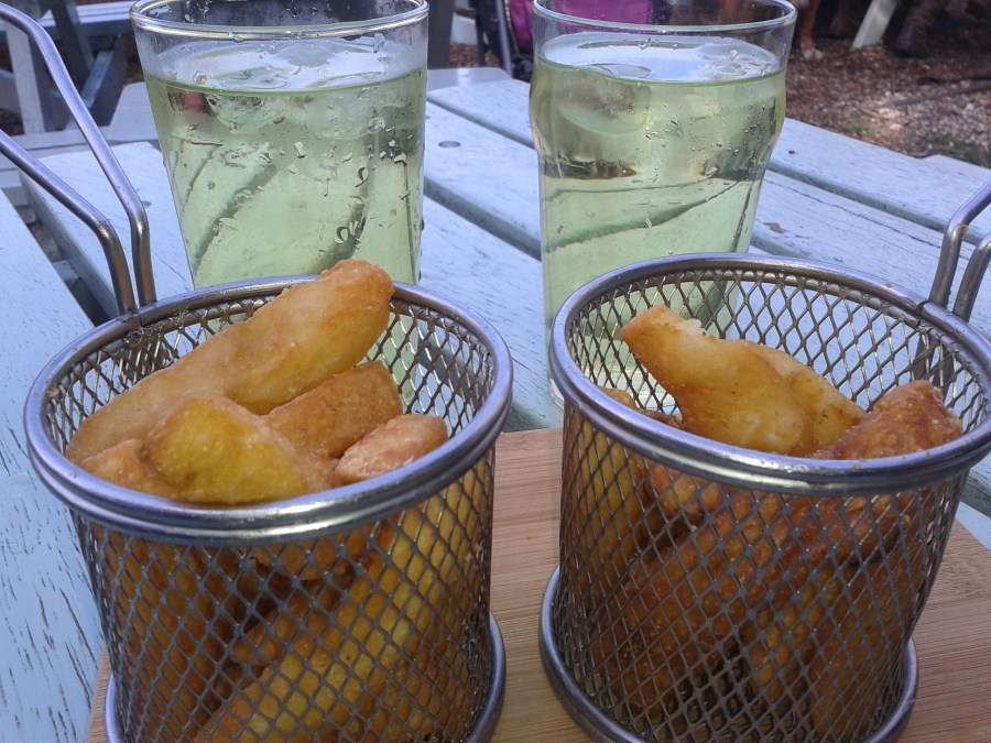 Chips in tiny deep fat fryer