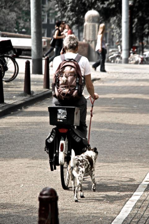 Bike and dog amsterdam sanjay gupta