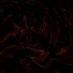 Die Farbe Schwarz und ihre Wirkung
