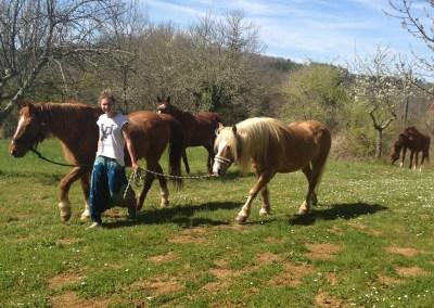 Pferdeliebhaber willkommen