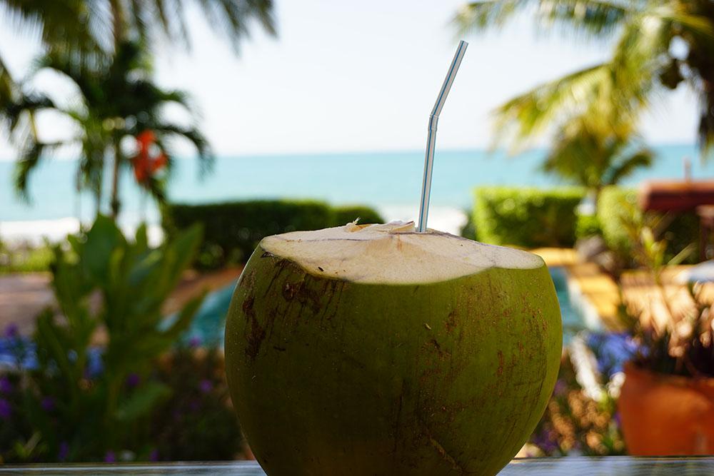 Reggae, Rum und Rastafari – Weihnachten in Treasure Beach/Jamaika