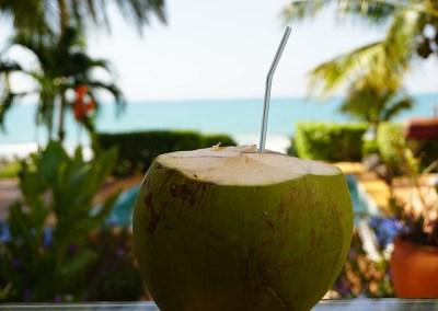 Kokosnuss im Marblue