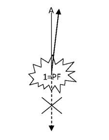 Fig. 3: Primo tempo