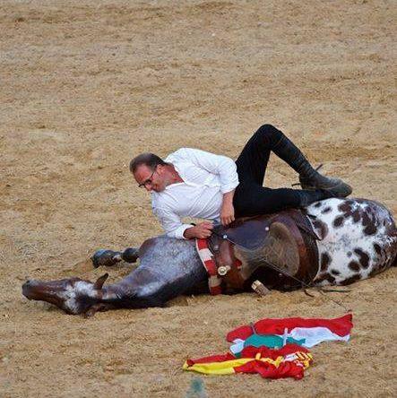 sicilia cavalli