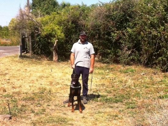 addestramento-cani-catania-cane-educato-1