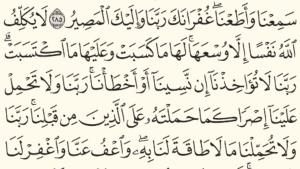 Holy Quran - Moshaf Al Madinah (5)