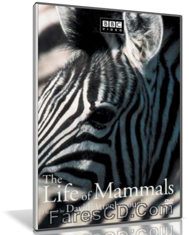 سلسلة حياة الثدييات | The Life of Mammals | وثائقى مترجم