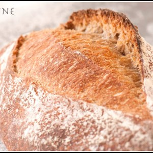 Teff Mash Bread
