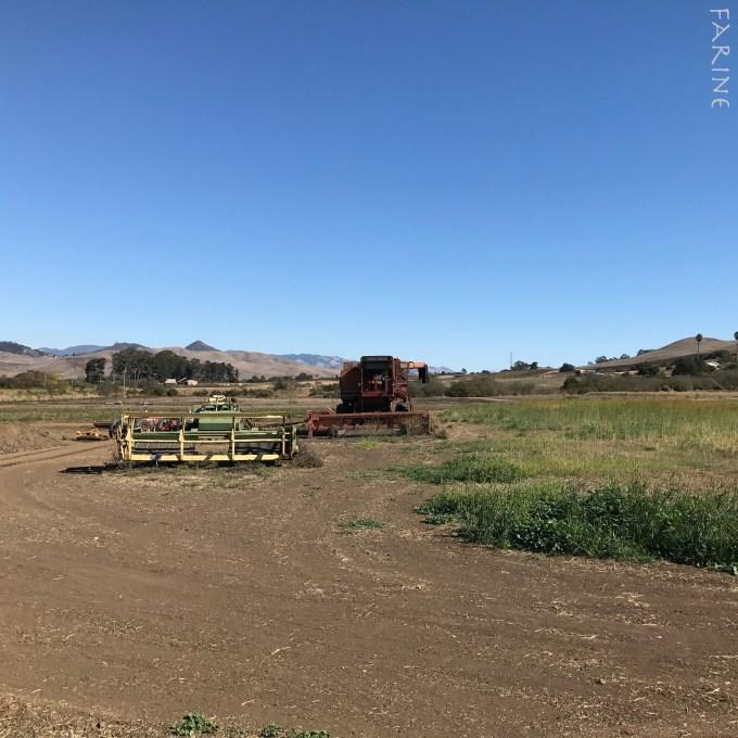 Kandarian Farm