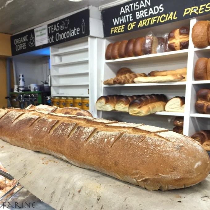Conger bread