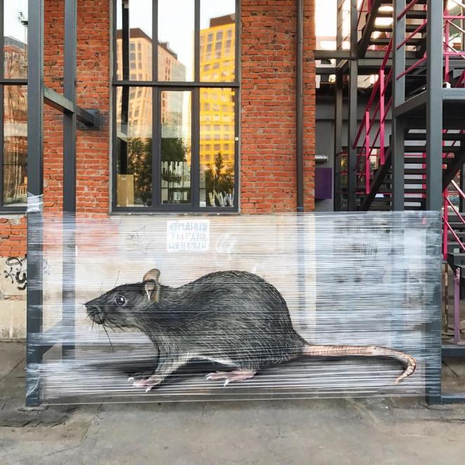 Streç Film ile Grafiti fare