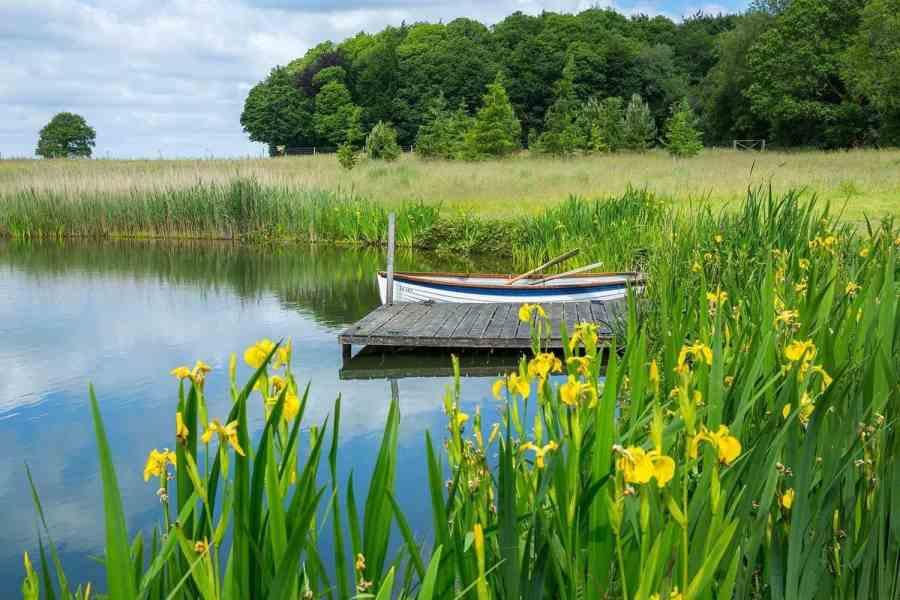 The lake at Farleigh Wallop
