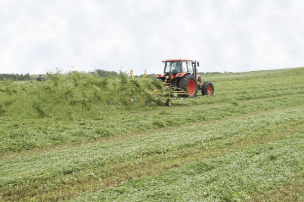Features- How Hay Equipment Affects Forage Quality | 2010 ...