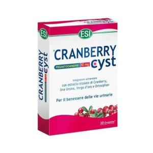 CRANBERRY-CYSTBenessere-Vie-Urinarie