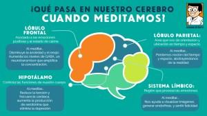 cerebro meditación mindfulness