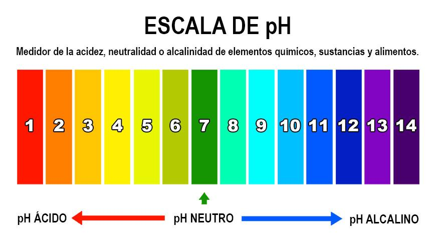 ph en alimentos importancia
