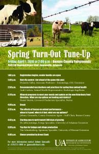 spring turn out
