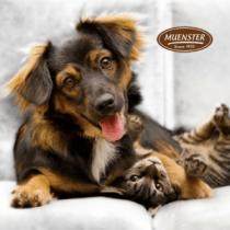Muenster Dog Food