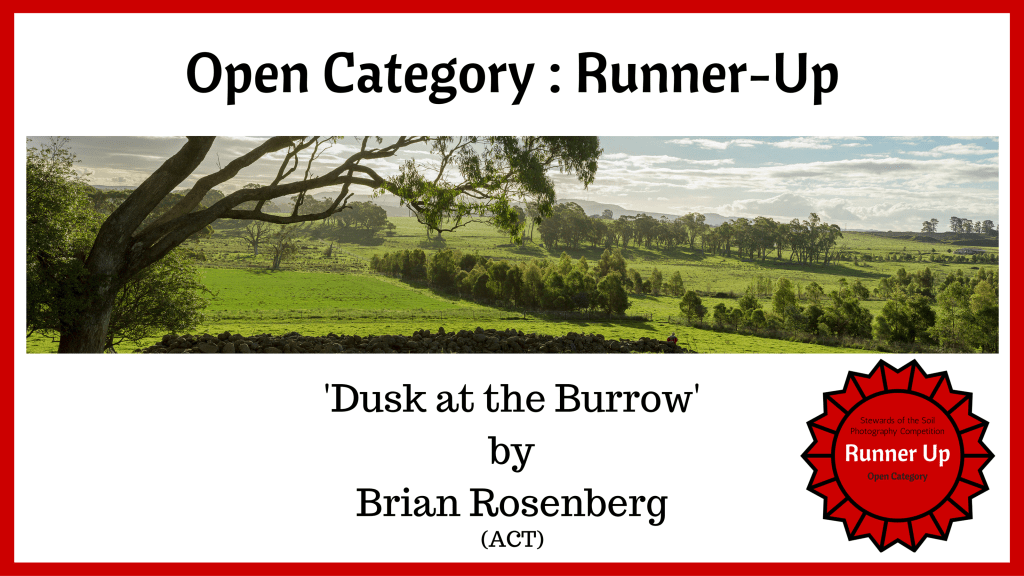 'Dusk at the Burrow' by Brian Rosenberg - Open Category - Runner-Up