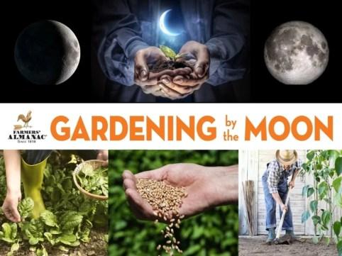 Planting by the Moon | Gardening Calendar - Farmers' Almanac