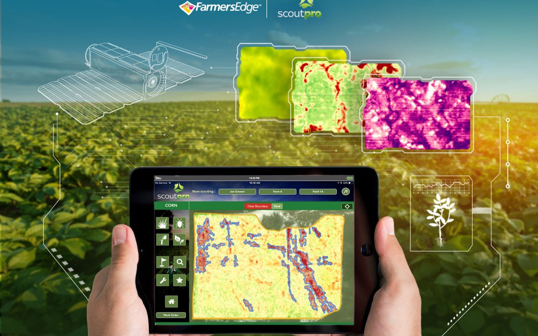 ScoutPro Partners with Farmers Edge to Boost Crop Monitoring Capabilities with Daily Satellite Imagery