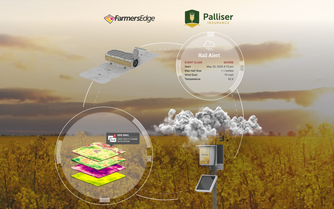 Farmers Edge and Palliser Insurance Partner to Connect Canadian Growers with Premium Crop Monitoring and Risk Management Solutions