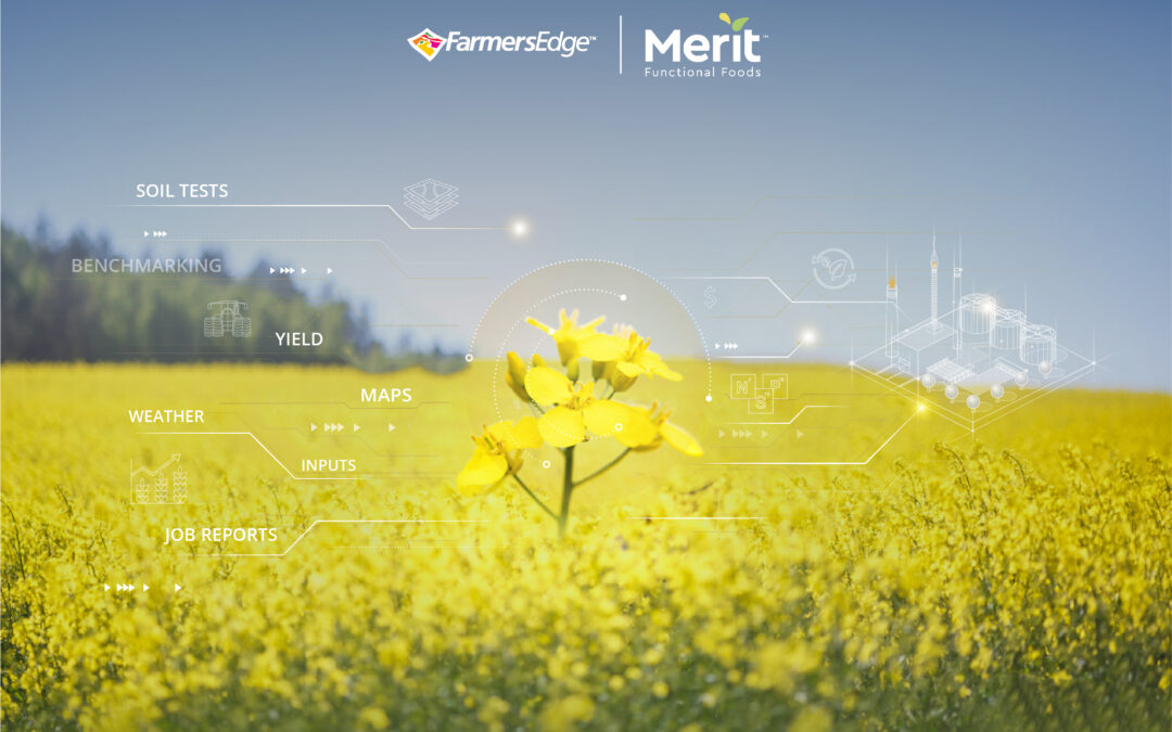 Farmers Edge and Merit Functional Foods Form Strategic Alliance to Source Top Quality Plant-Based Proteins from Progressive Growers